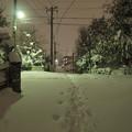 Photos: 雪国?いいえ…