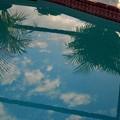 写真: Pool in the Morning 3-8-15