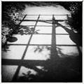 写真: Squares 6-12-16