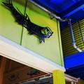 写真: Fish 9-27-16