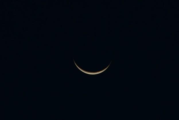 Photos: Paper Moon 9-28-16
