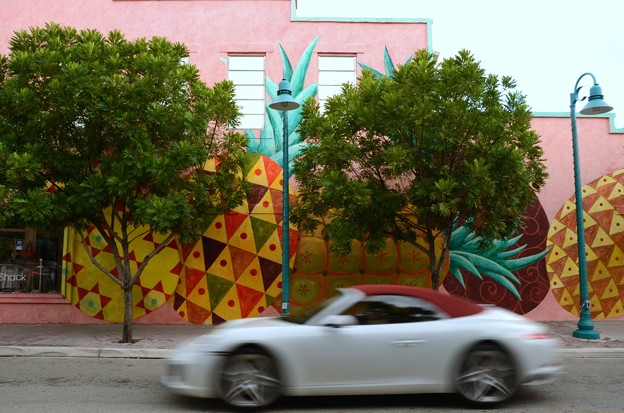 Photos: Pineapples 10-2-16