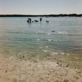 写真: The Beach 2-4-17