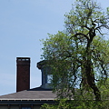 a Cupola and a Tree