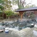 写真: 宿に戻って野天風呂を再度堪...