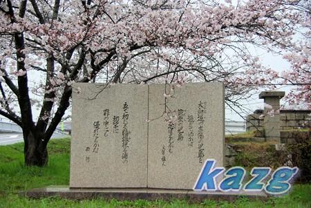ソメイヨシノの花と大伴旅人、西行の歌碑