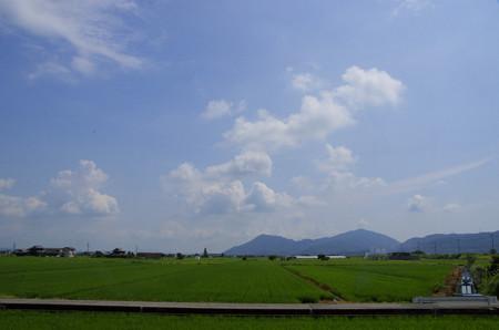 真夏の午前の田園風景