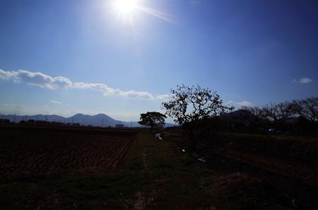 晴れた初冬の田園風景