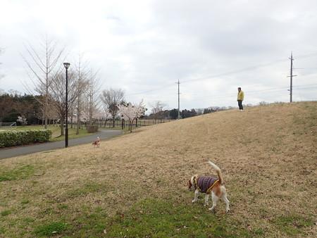 高速降りて直にマリうみ大好きな公園に来たよー!