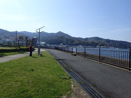 海辺の公園です
