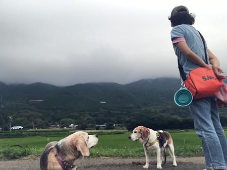 雲が降りてくるくらい風が強かった(寒いし・夏?)