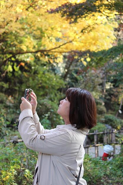 写真: 東山植物園2