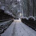 雪の嵯峨野