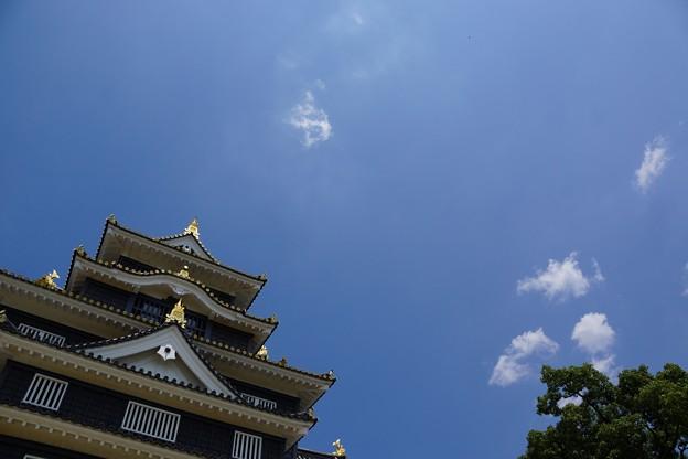 岡山城の勇姿