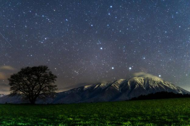 【再現像】夜の一本桜と岩手山