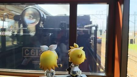 リン:「ここはマジいい眺め♪」