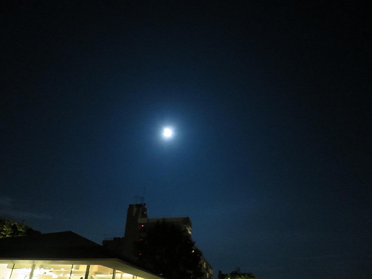 肉眼での月