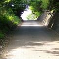 Photos: 150503散歩38