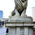 写真: 2015_0517_154645_なにわ橋のライオン