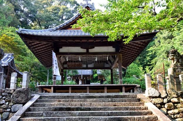 2013_0816_154750_石座神社