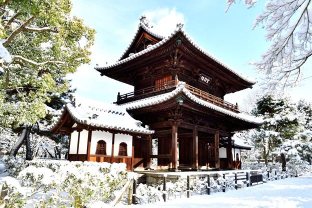 2017_0115_093609 建仁寺山門雪化粧
