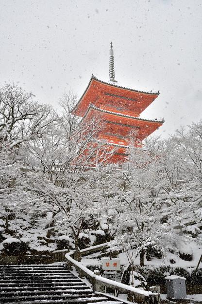 2017_0115_110138 雪にかすむ三重塔