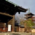 写真: 2017_0123_160813 東寺 南大門と五重塔