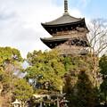写真: 2017_0123_160630 東寺 八島社と五重塔