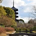 Photos: 2017_0123_152442 東寺 宝蔵と五重塔