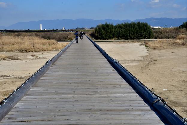 2017_0204_115422 流れ橋