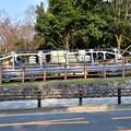 Photos: 2017_0319_152451 インクラインの搬送台車