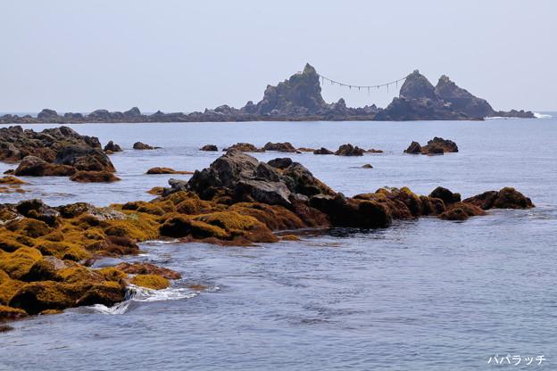 真鶴岬の溶岩と三ツ石