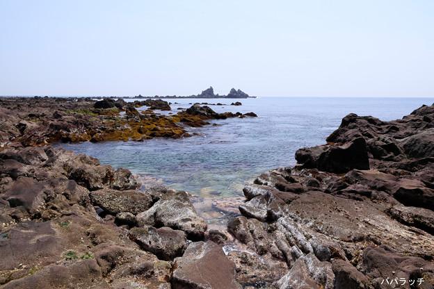ゴツゴツの真鶴岬