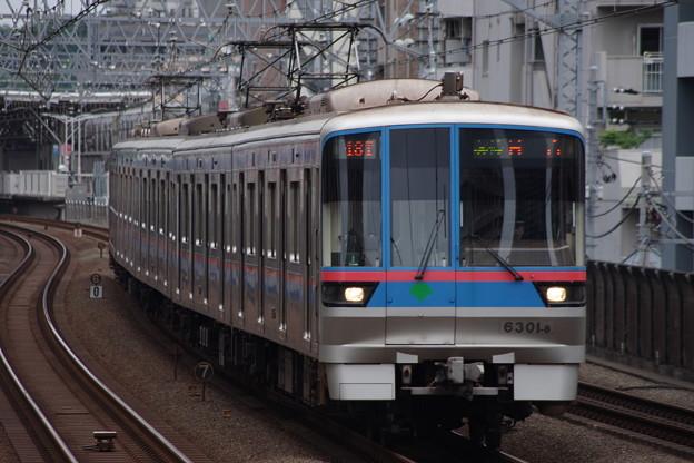 IMGP2387