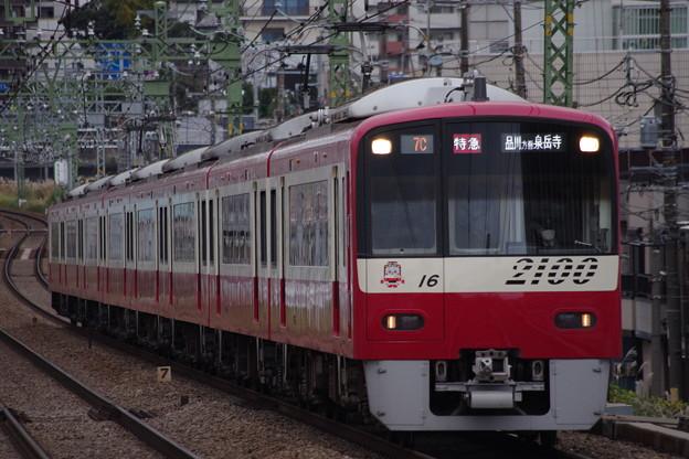 IMGP4746