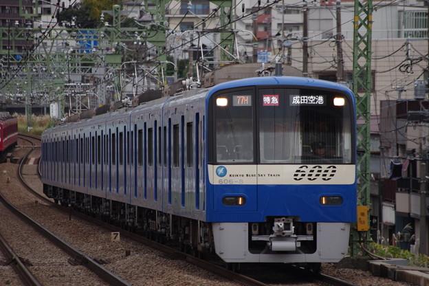IMGP4762