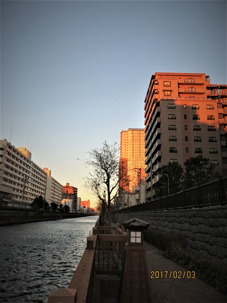 Photos: 朝陽