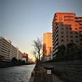 写真: 朝陽