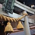 写真: 小網神社