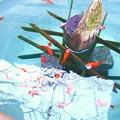 写真: 睡蓮鉢の金魚