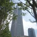 写真: 横浜ランドマークタワー (2)
