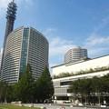 写真: 横浜みなとみらい (7)