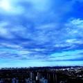 写真: 川崎市から東京方面 (2)