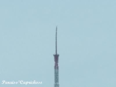 先っちょが曲がった東京タワー