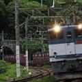 """Photos: 日没まじか、約11時間半遅れで通過した""""EF65-2089""""牽引 5086列車"""
