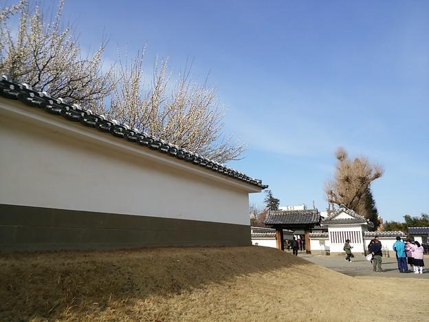 虎の尾  弘道館入り口