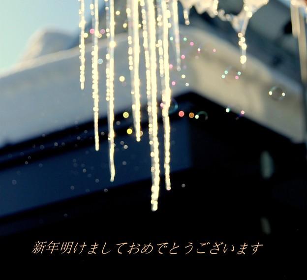 写真: 年賀