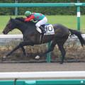 Photos: シゲルヒダカ レース(15/04/05・4R)