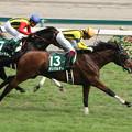 ガリバルディ レース_2(16/07/24・第64回 トヨタ賞中京記念)
