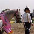 オグリキャップ_2(05/04/29・笠松競馬場)